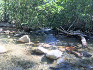 ガリーナ公園で里山散策 ② Nature Trail at Galena Creek Reginal Park